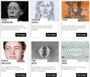 Website by Rebekah Turner
