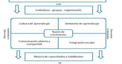 aprendizaje organizacional para la competitividad