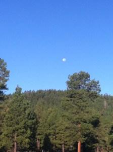 Morning on site of the Flagstaff Trail Marathon 2013