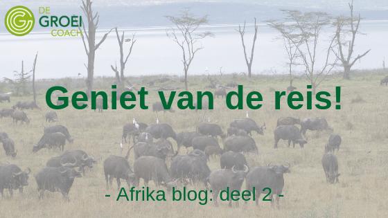 De Groeicoach safari blog 2 - geniet van de reis