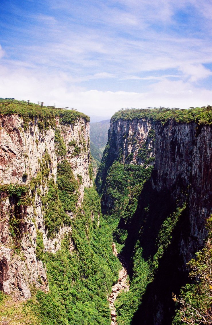 Outras vistas do campo do Tocantins.
