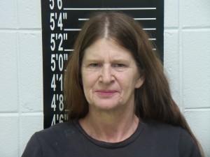 Lisa L. Garrett (SCSO booking photo)