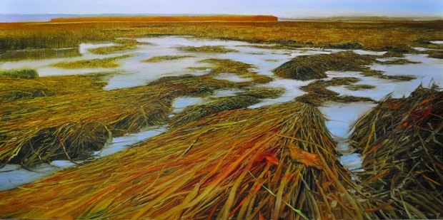 Shoreline Marsh Dunlop Labyrinth oil on brushed silver anodized aluminum, 24x48.