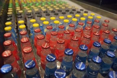 flesjes