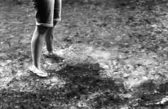 Film - 255
