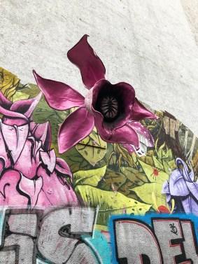 3D-Graffiti art