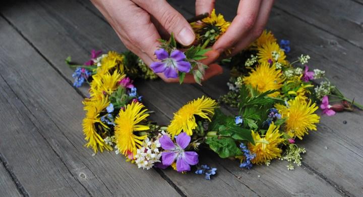 flower-1467550_1920.jpg