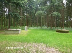 Überall im Wald sind Trinkwasserbrunnen