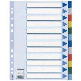 Leitz Blanko Plastikregister (Polyproplyen, A4, 12 Blatt) hellblau -