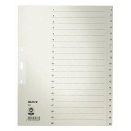 Leitz Papierregister 1-20, A4, Papier, 20 Blatt, grau -