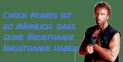 1000 legendre Chuck Norris Witze  Facts zum Totlachen