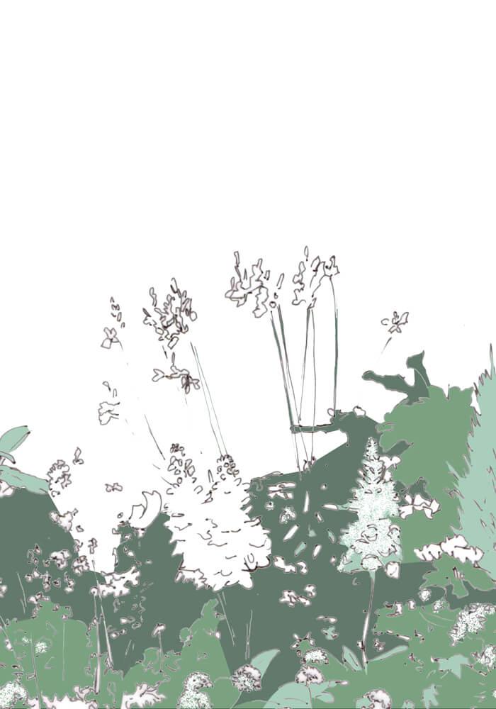 Grafik: weiße Blüten vor einer weißen Wand