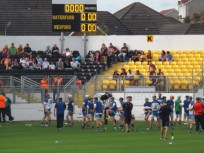 02 Waterford v Wexford 19 July 2014