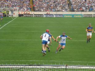 Waterford v Tipperary 12 July 2015 (10)