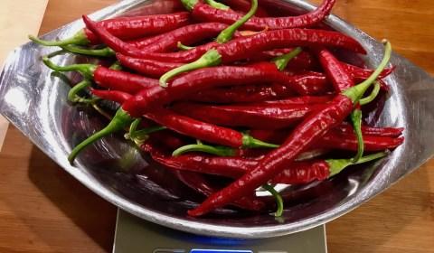 200g frische Chilis