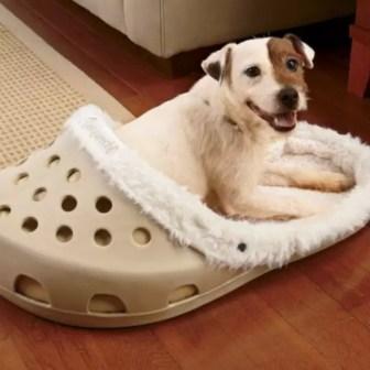 Resultado de imagen para cama gigante en zapato