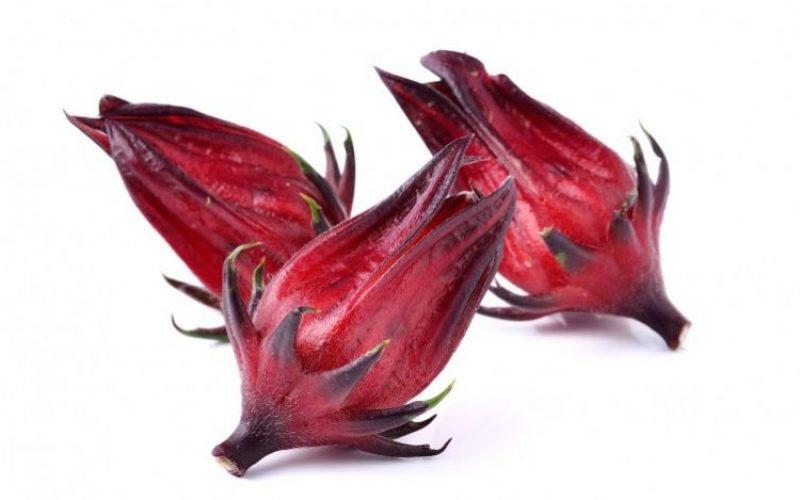 la flor de jamaica es buena para bajar el colesterol
