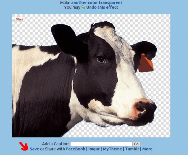 Computertip De achtergrond van een afbeelding transparant