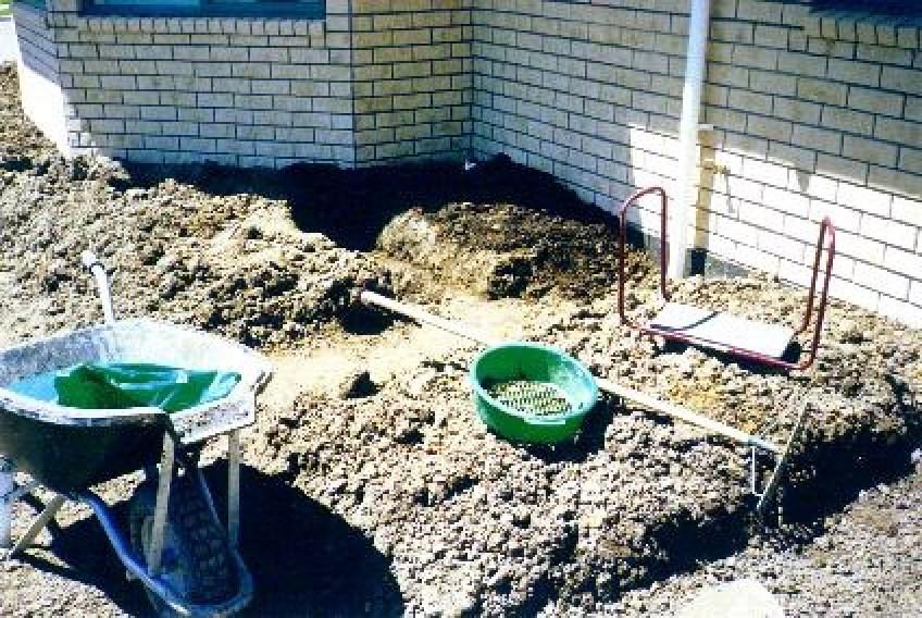 Starting veggie garden