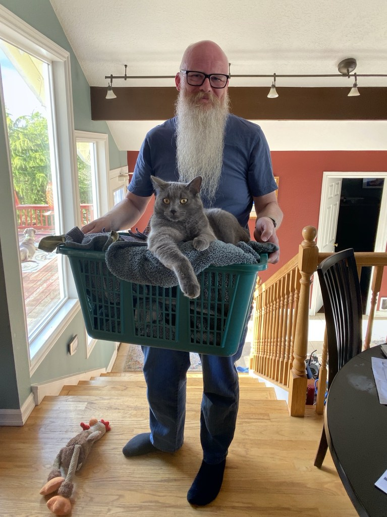David with Paladin in laundry basket