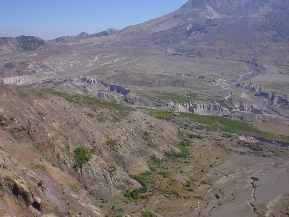 Valley below Mt St Helens