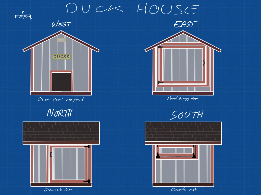 Duck house design