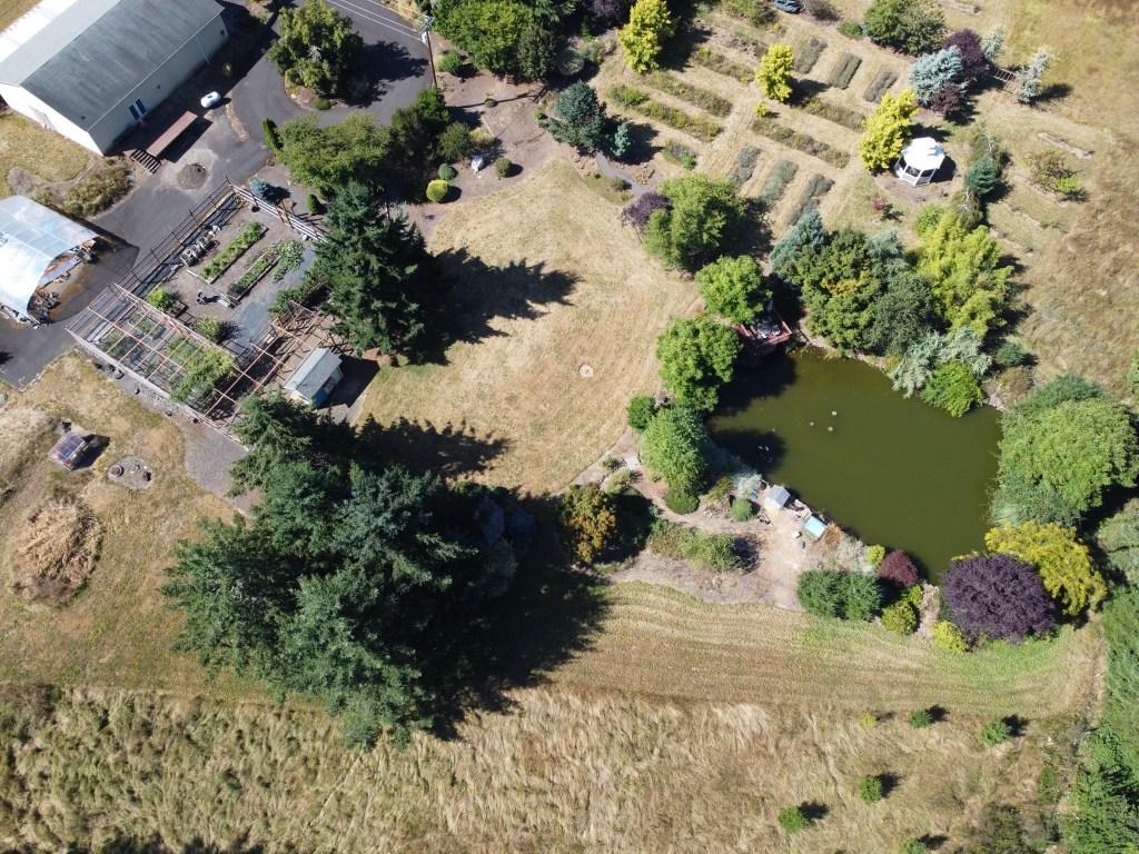 Aerial veggie garden, back lawn, pond, etc