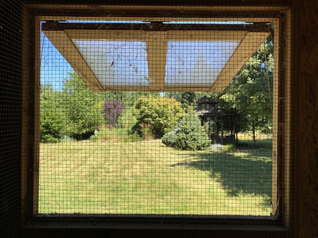 View out chicken coop window