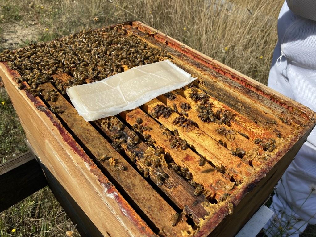Beehive mite treatment