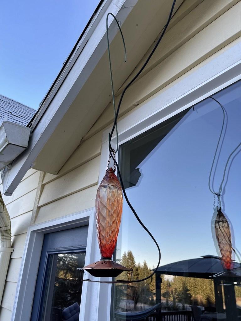 Hummingbird feeder with heating pad