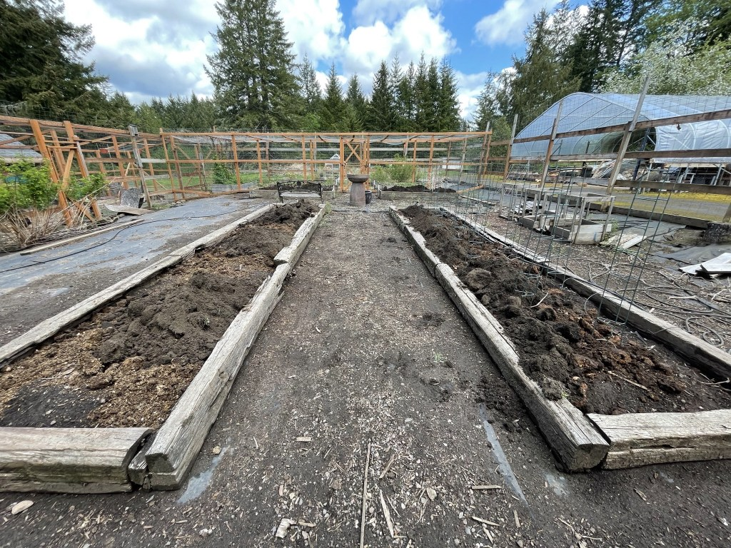 Veggie beds with compost