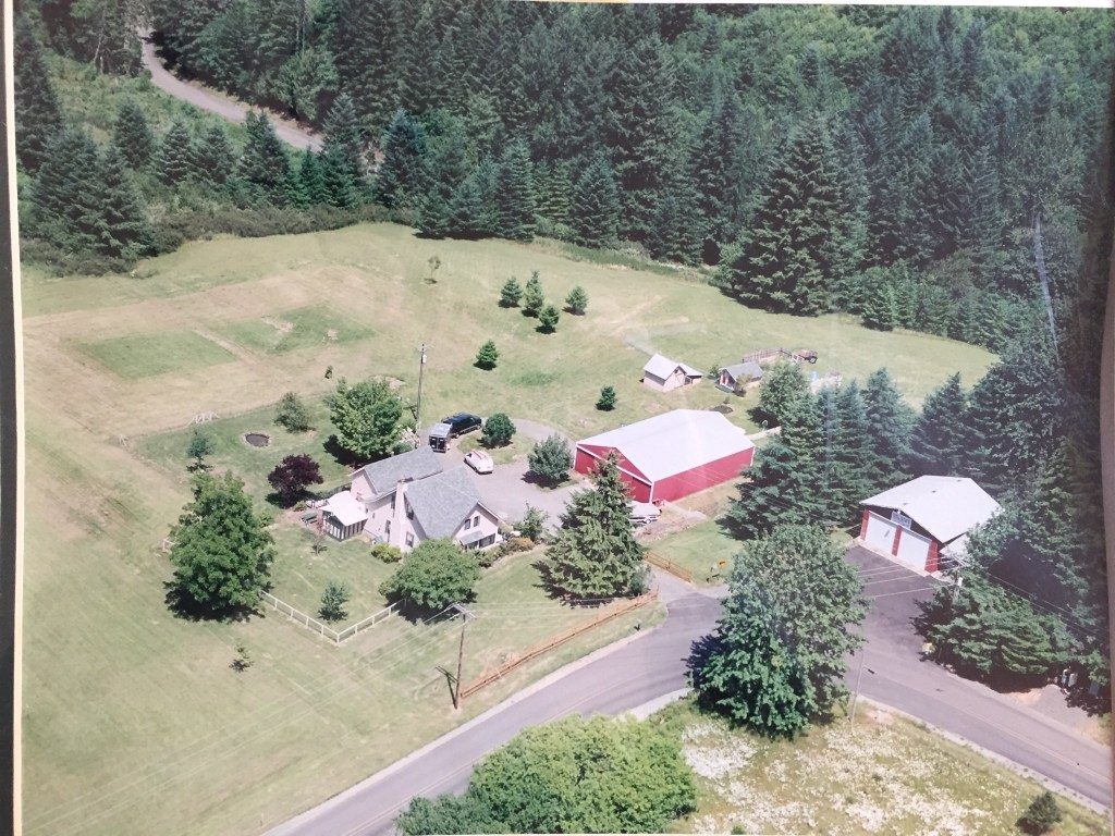Aerial photo of our homestead from 2001
