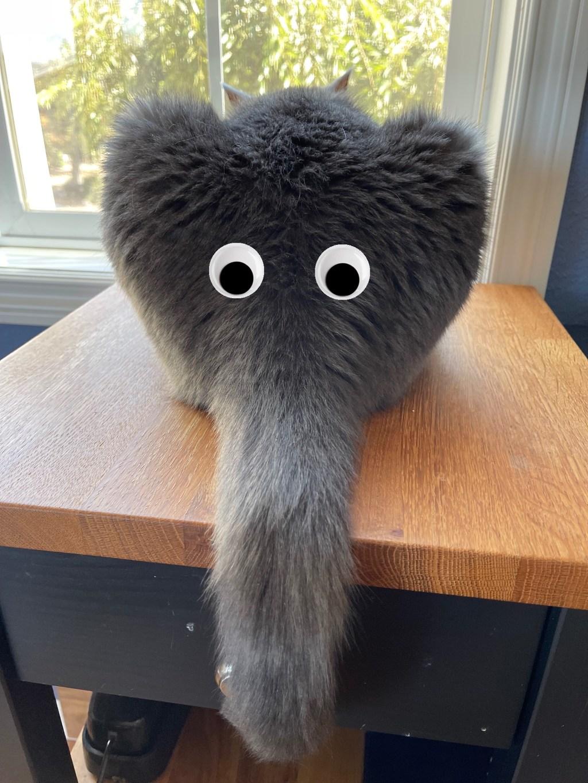 Paladin with googly eyes