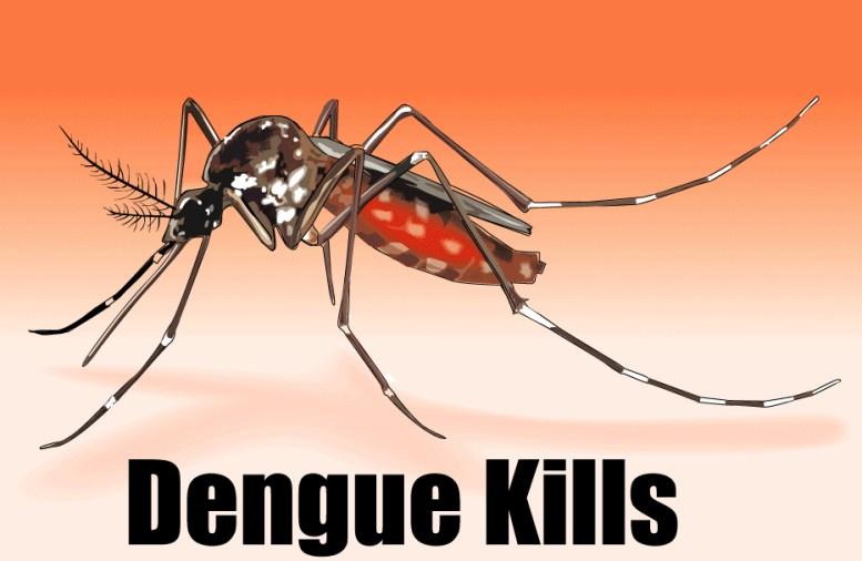 Killer! Dengue Fever, Symptoms, Home Remedies, Tips To Prevent From Dengue?