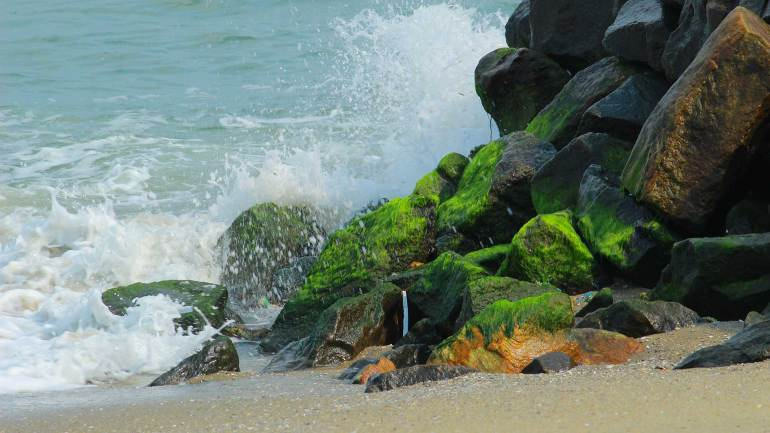 Waves of Arabian Sea - Fort Kochi Beach