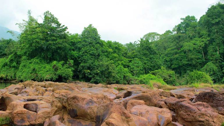Rock and Green - Vadattupara Forest