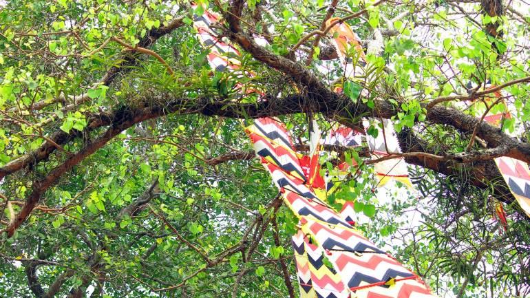 Nilapadu-Thara-Kodungallur-Bharani-Festival-2018-dekochi, Kodungallur Bharani Festival, കൊടുങ്ങല്ലൂർ ഭരണി
