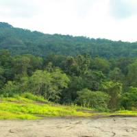 Tourist Places to Visit in Kothamangalam