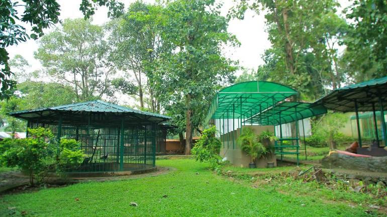 Zoo-in-Thattekkad-Bird-Sanctury-Kothamangalam-Tourist-Places
