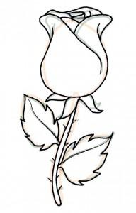 Schöne Rose einfach malen - DekoKing - DIY Bastelideen