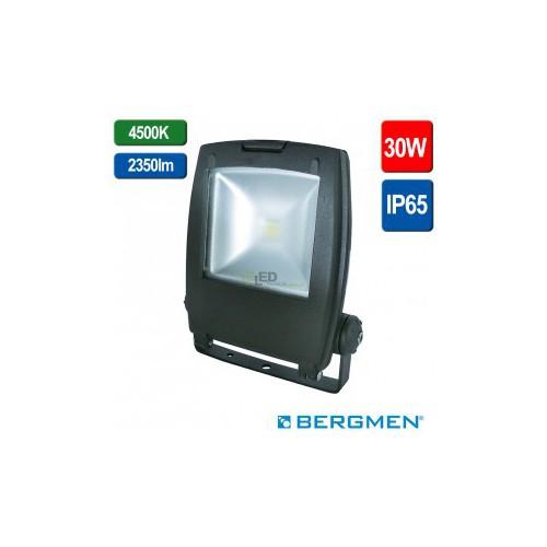 Bergmen 01-006-002-04-30