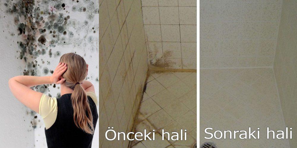 Banyodaki Küf Temizliği Banyodaki Küf Nasıl çıkarılır Nasıl