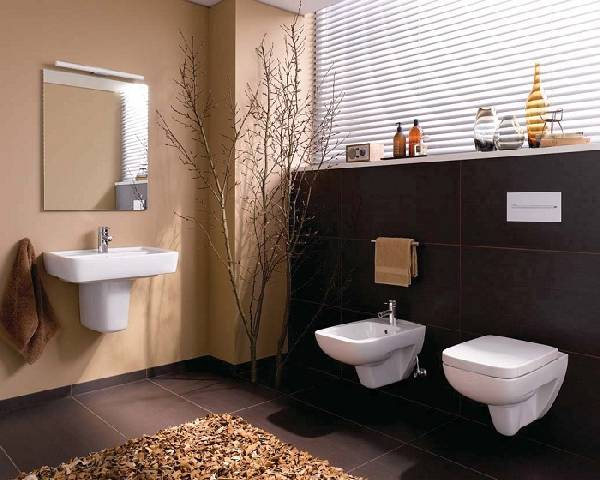 Asma kenarsız tuvalet, fotoğraf 2