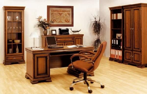 ev ofis içi, fotoğraf 15