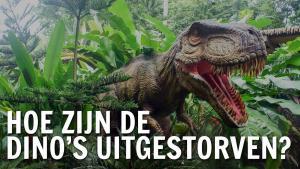Dinosaurussen overleden aan te grote sociale bubbel