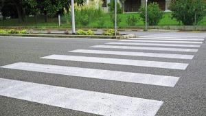Stad Gent huldigt zwart-witzebrapad in om cisgemeenschap hart onder de riem te steken