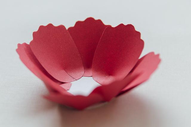 DIY Bunga Peoni Kertas 11.jpg