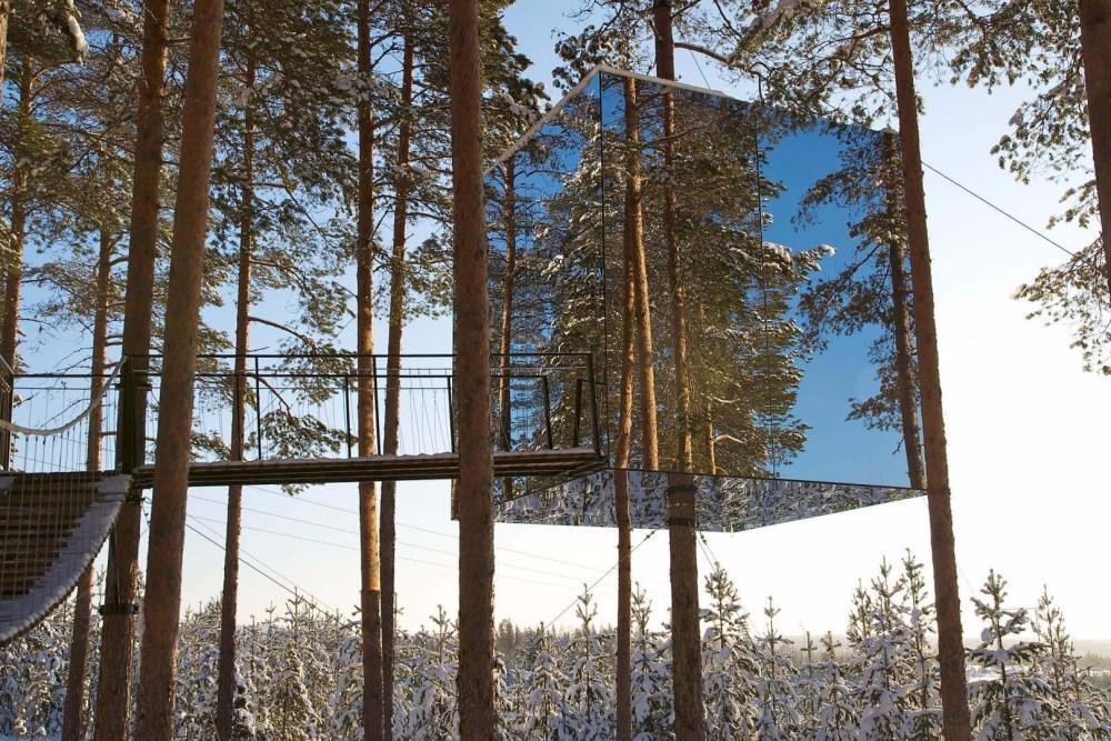 Rumah Pohon Cermin