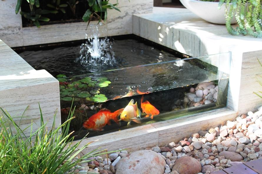 Kolam Ikan Koi Menormalkan Tekanan Darah