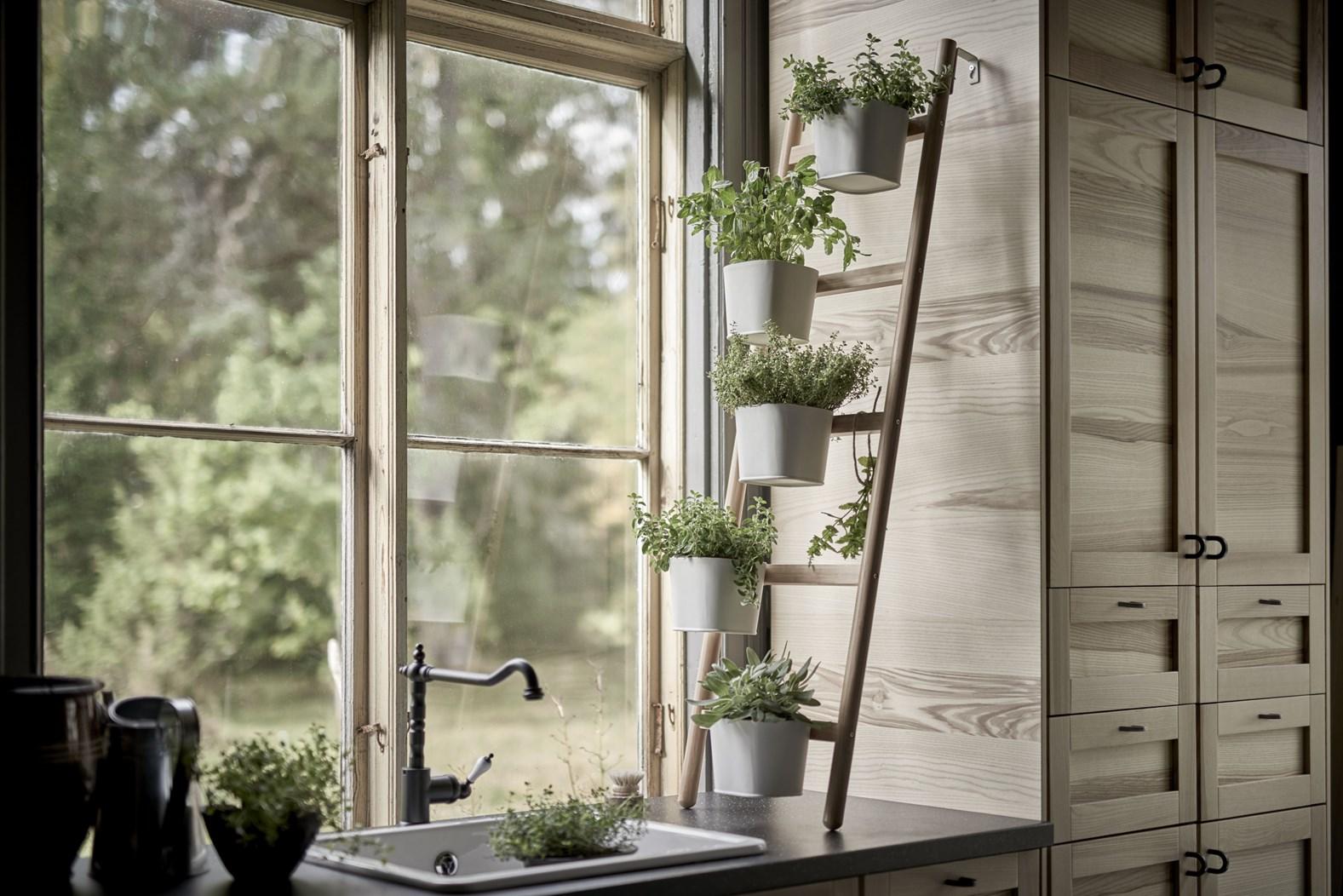10 Desain Taman Dalam Rumah Untuk Rumah Kecil